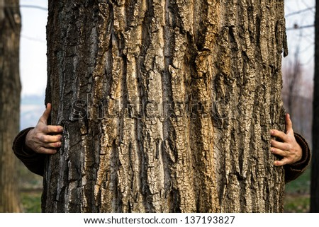 Man standing behind and hugging the three. / Hugging Tree - stock photo