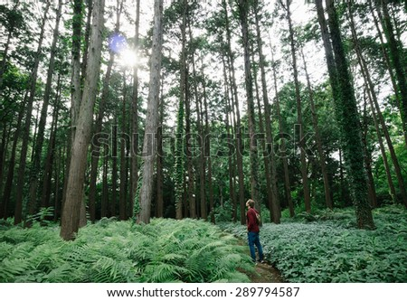 Man standing in lush green botanical garden in the middle of Tokyo metropolis  - stock photo
