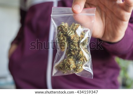 Man trading marijuana showing buds in the zip package - stock photo