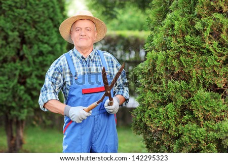 Man trimming a fence in a garden - stock photo