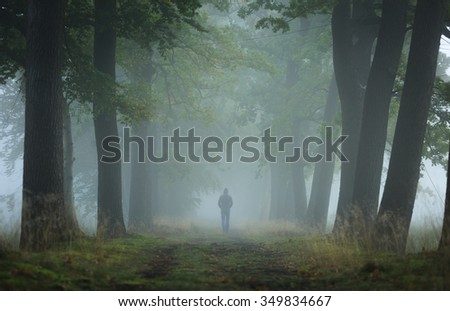 Man walking alone in a lane on a foggy, autumn morning. Shallow D.O.F. - stock photo