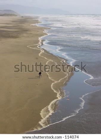 Man walking dog at beach. - stock photo