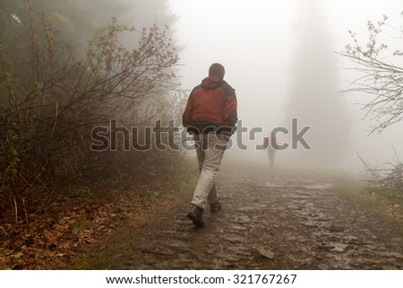 Man walking in the forrest - stock photo