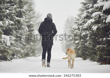 Man walking with his yellow labrador retriever in winter landscape - stock photo
