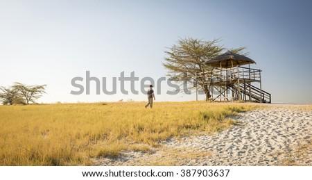 Man walks through long grass towards a raised hut at sunset while on safari in the Makgadikgadi Pans, Botswana, Africa - stock photo