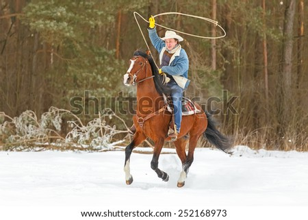 Man with a lasso riding a bay stallion. - stock photo