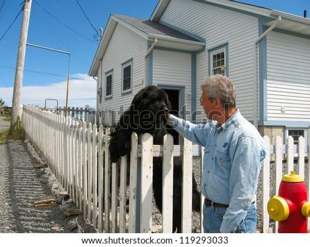 Man with a Newfoundland dog - stock photo