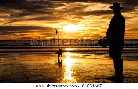 Man with hat walking a dog on Piha Beach in sunset, New Zealand - stock photo