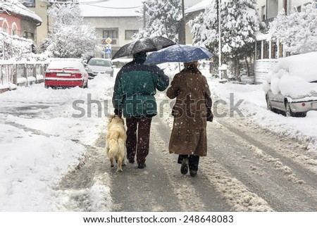 Man, woman and dog walking on the street while snowing - stock photo