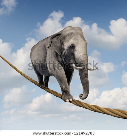 Managing risk and big business challenges and uncertainty with a large elephant walking on a dangerous rope high in the sky as a symbol of balance and overcoming fear for goal success. - stock photo
