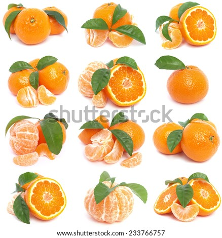 Mandarin collection - stock photo