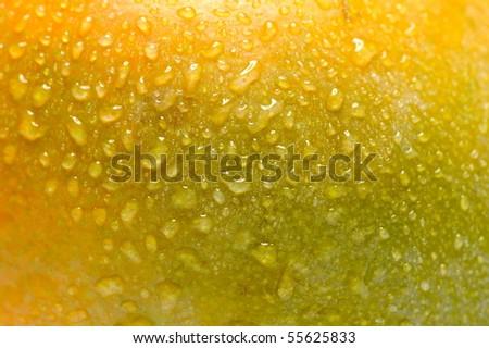mango close-up - stock photo