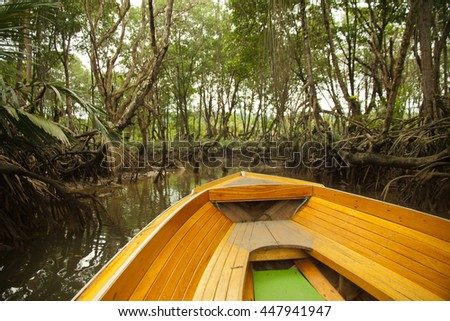 Mangrove forests with Stream in Borneo , Mangrove tree with a small river mage has grain or blurry or noise and soft focus when view at full resolution. - stock photo