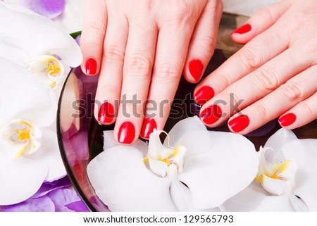 manicure red - stock photo