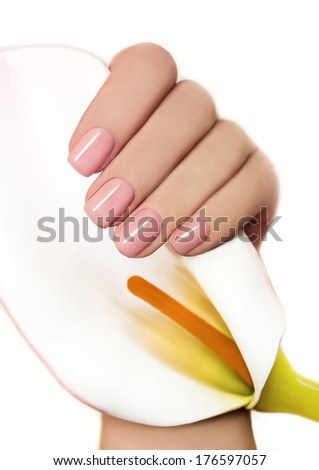 Manicure with gel coating on the young female hand with flower Koala  - stock photo
