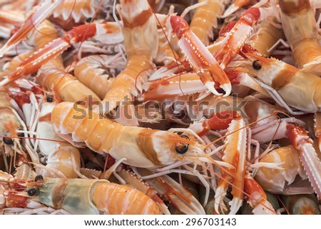 Mantis Shrimp in seafood market - stock photo