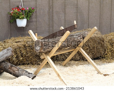 Manual saw on wood log and timber, lumberjack and sawdust - stock photo