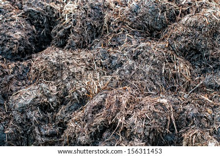 Manure compost prepared for a field - stock photo