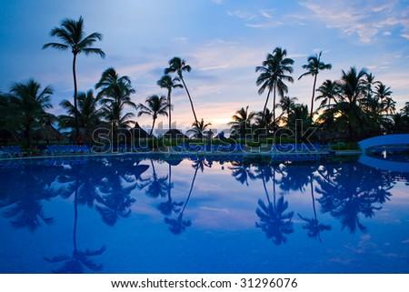Many black palm on a night beach night near pool - stock photo