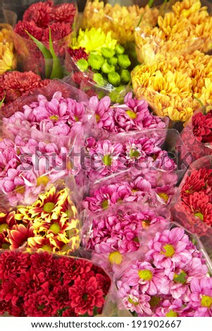 many color flower in flower shop - stock photo