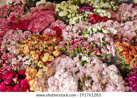 many flower in shop in thailand - stock photo