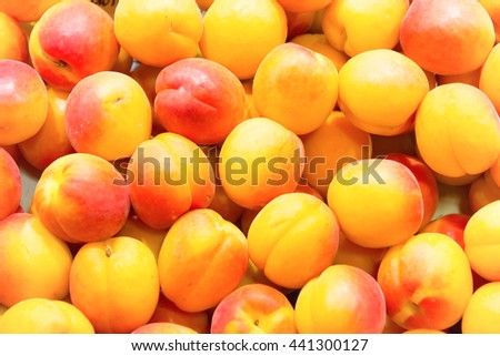 Many fresh ripe apricots on farm market. Fruit background  - stock photo