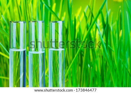 Many glass test tubes  with fresh green spring grass on background - stock photo