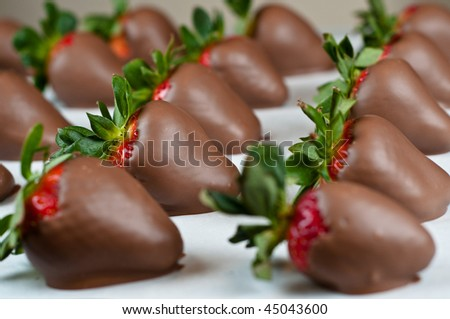 Many hand dipped chocolate covered strawberries in a row with shallow depth of field - stock photo