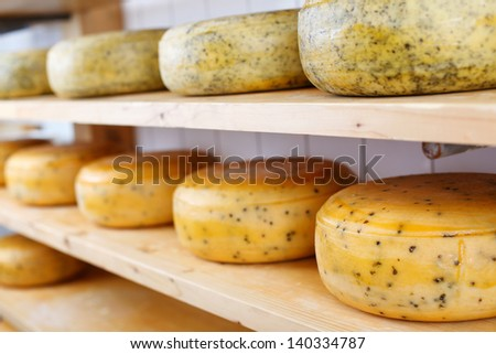Many matured cheeses on shelvesMany matured cheeses on displayed on shelves at the cheesemaker store - stock photo