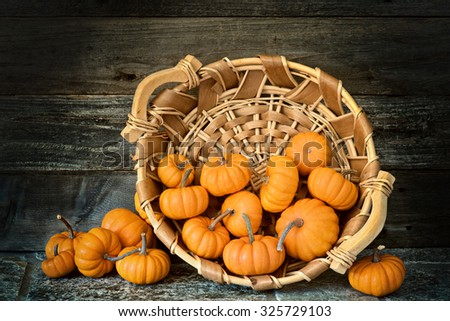 Many Moody and Dramatic Fall Halloween, Thanksgiving Mini Pumpkins in a basket centered against rustic wall on rough stone floor.  Warm tone Horizontal still life with dark vignette and side light - stock photo