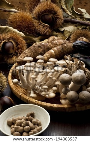 Many mushrooms, roots and nuts in and around a wicker basket. - stock photo