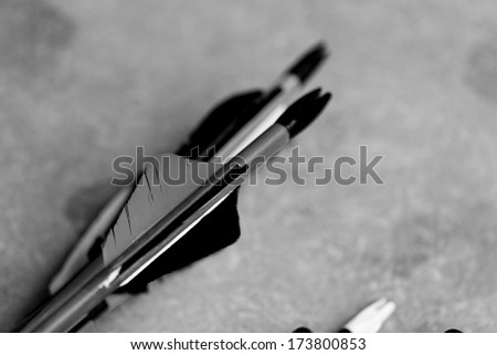 many new modern feathered end of arrows bw - stock photo
