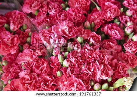 many pink flower in thai shop - stock photo