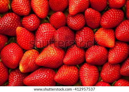 Many ripe strawberries as fruit background picture - stock photo