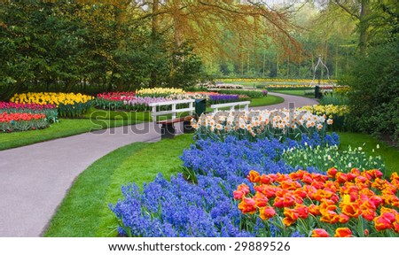 Many spring flowers in many colors on an early april day in the park - stock photo