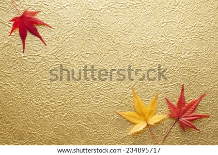Maple and gold paper - stock photo