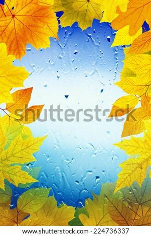 Maple leaves, window with rain drops, rainy day, season is fall - stock photo