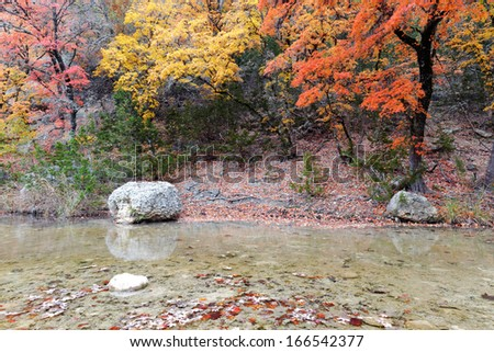 Maple trees and Creek at Lost Maples - stock photo