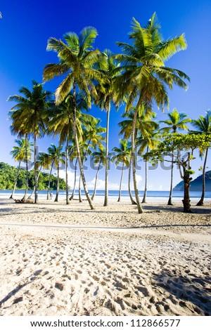 Maracas Bay, Trinidad - stock photo