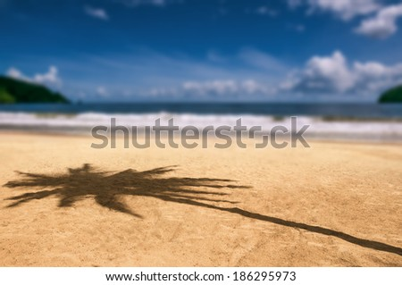 Maracas bay Trinidad and Tobago beach palm tree shadow Caribbean blurry background - stock photo