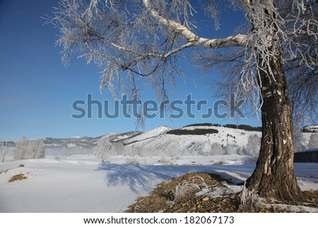 march morning in altai's mountains - stock photo