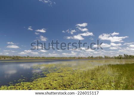 Mareeba Wetlands, Atherton Tablelands, Queensland, Australia - stock photo