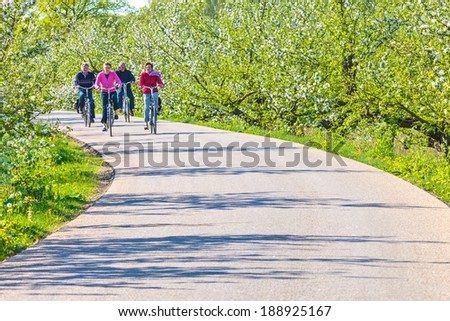 MARIENWAERDT, THE NETHERLANDS - APRIL 16, 2014: Two senior couples cycling through a Dutch blooming orchard in The Betuwe near Marienwaerdt - stock photo