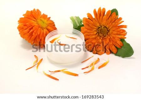 marigold salve with petals - stock photo