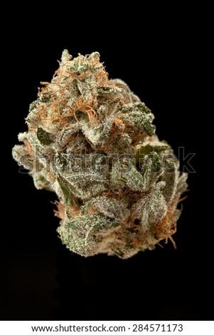 Marijuana bud - Blackberry Kush - isolated on black. - stock photo