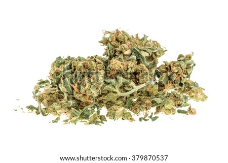 Marijuana buds isolated on white background. without shadow - stock photo