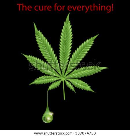 Marijuana leaf - THC - stock photo