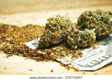Marijuana Money, Hundred Dollar Bill and Cannabis Buds, Representing the Revenue of the Legal American Drug Business  - stock photo