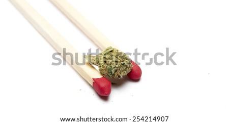 Marijuana on White  - stock photo