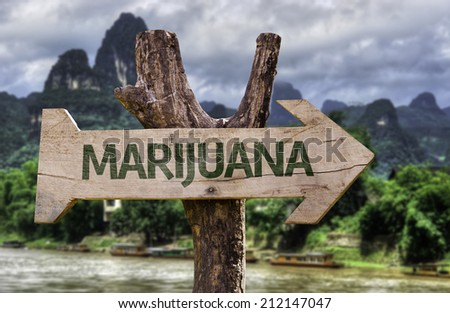 Marijuana wooden sign with a forest background  - stock photo